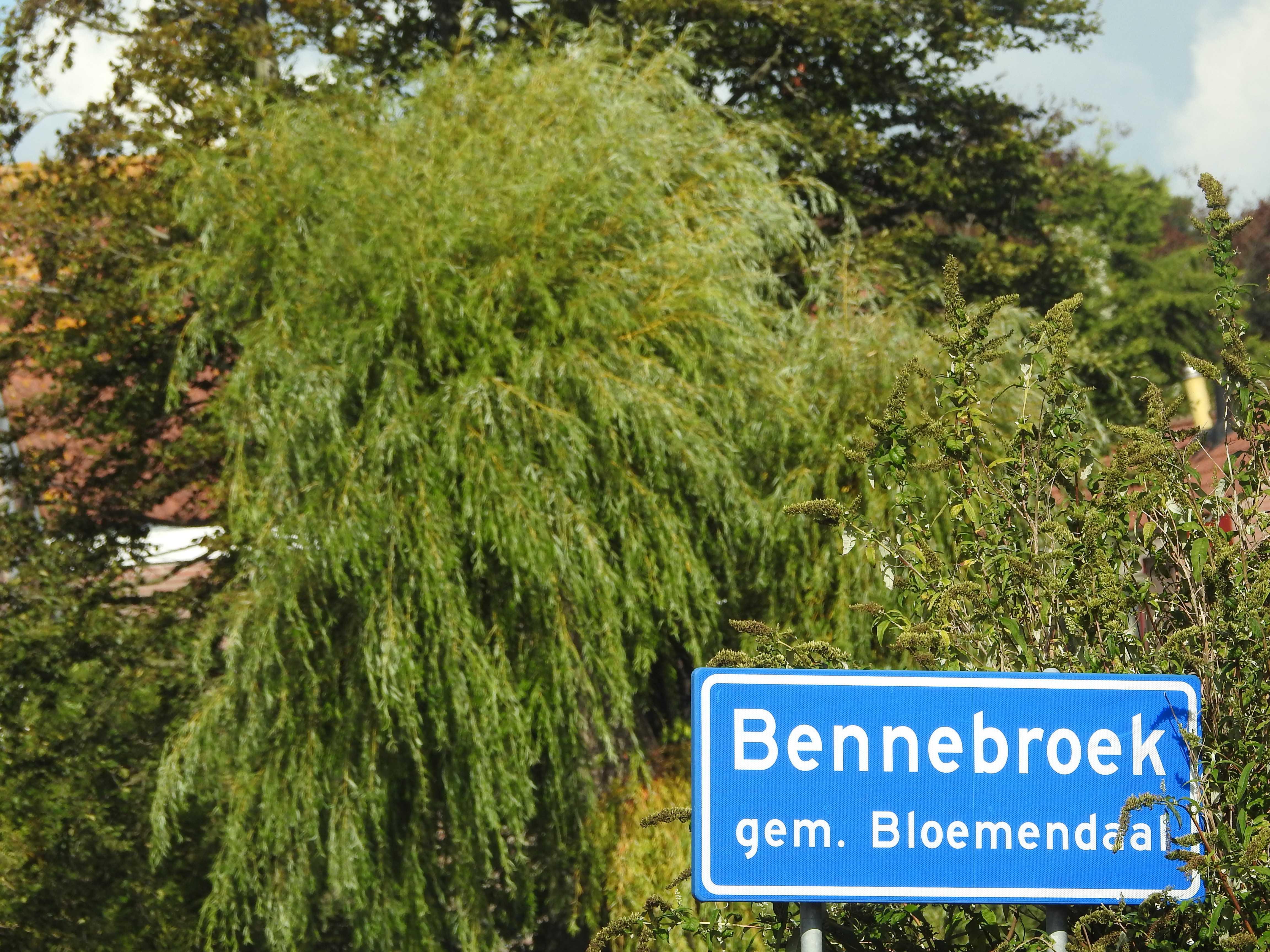 Bennebroek